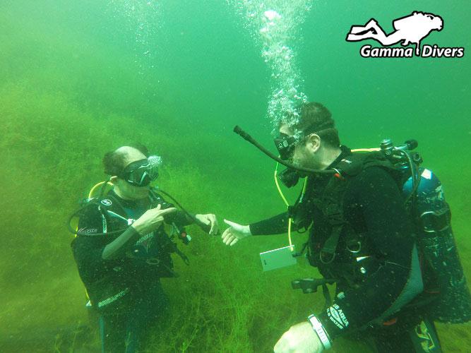 Ahanak pond diving tour