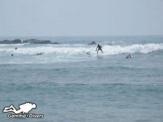 surfing in Mirrissa