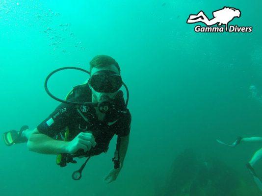 Napoleon reef dive site Unawatuna